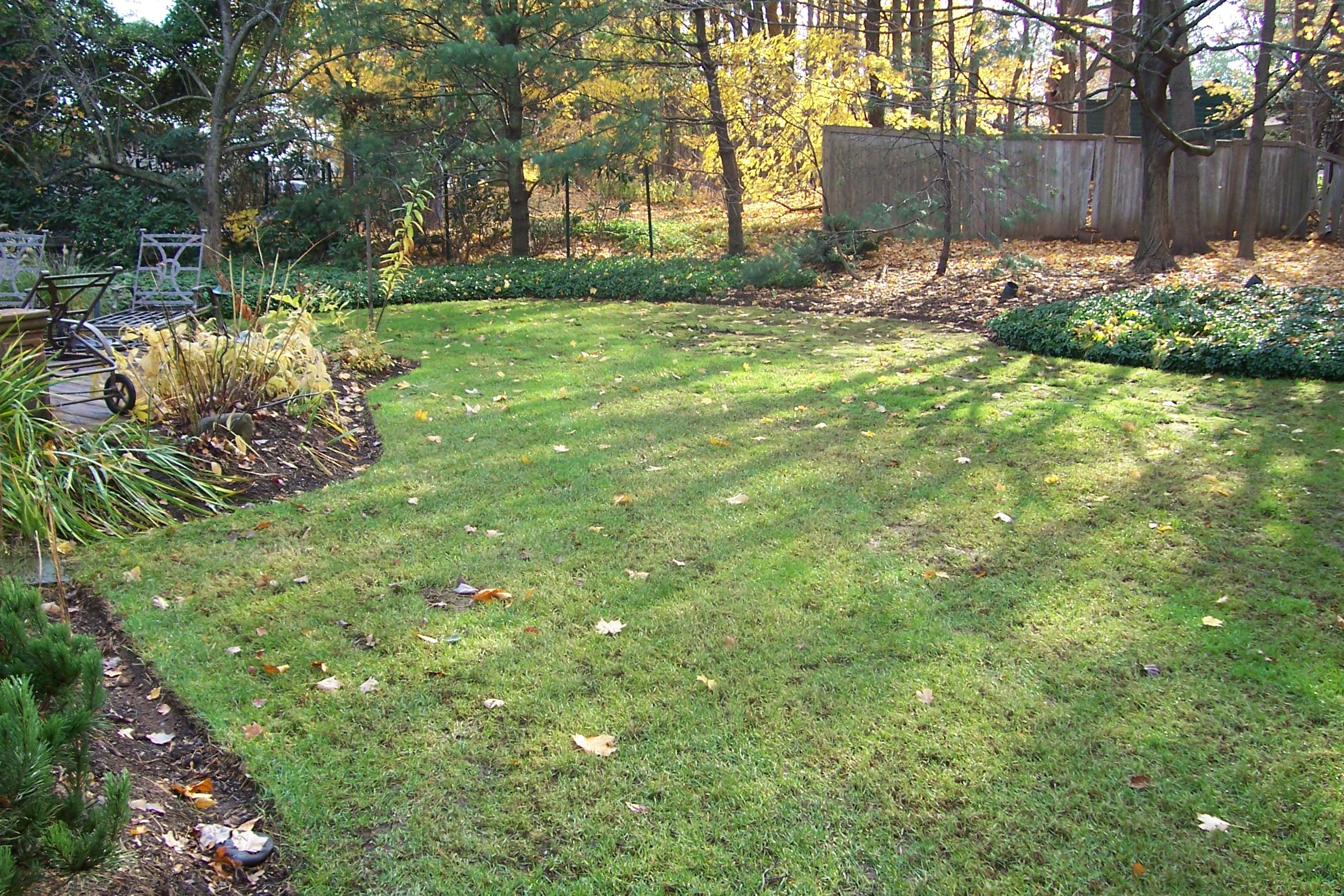 correcting a flooding backyard country landscaping llc