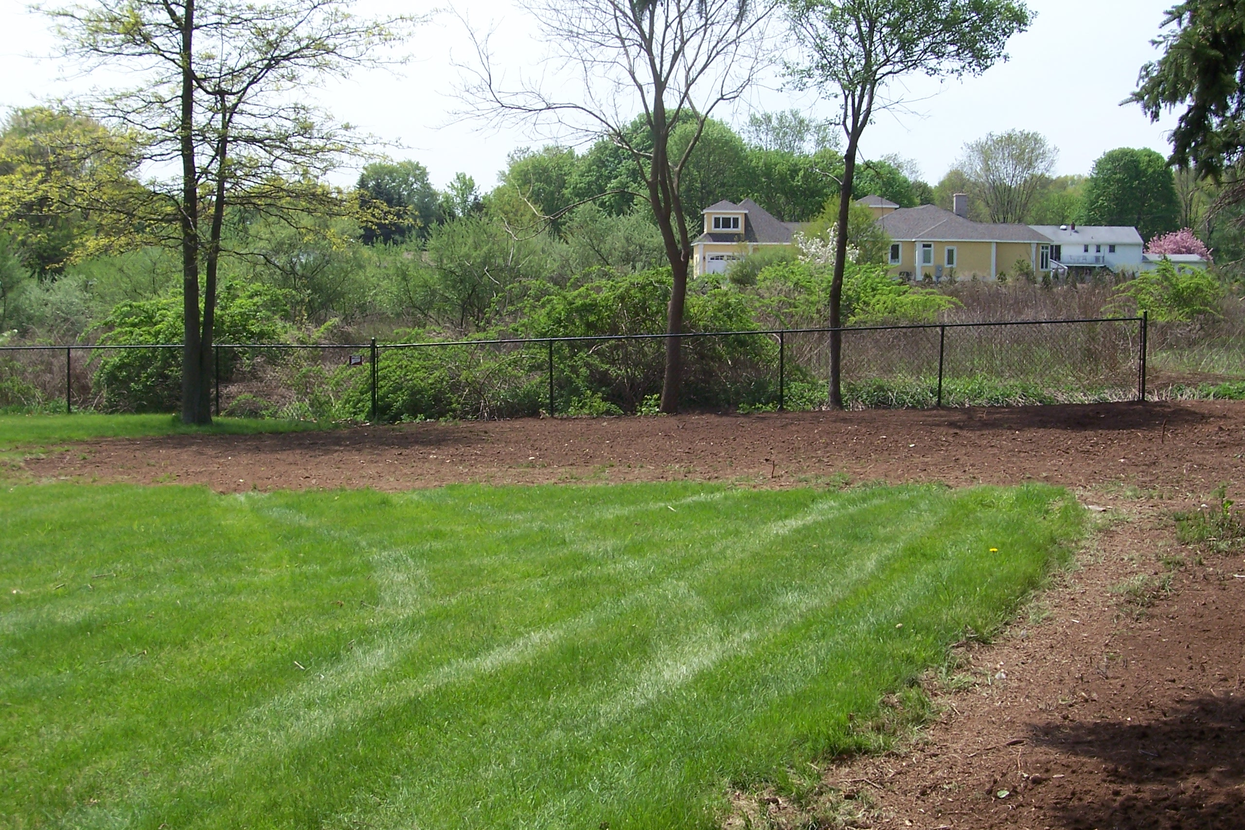 Clean Backyard backyard clean up | country landscaping, llc